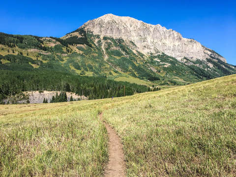 Mountain bike trail in crested butte