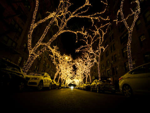Upper east side tree lights