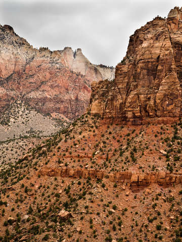 Zion national park 16