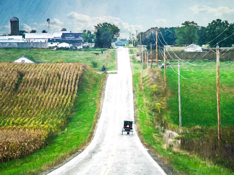 Amish roller coaster
