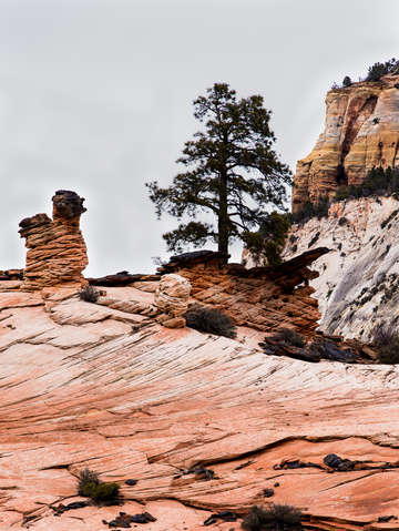 Zion national park 32