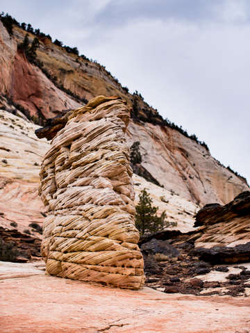 Zion national park 40
