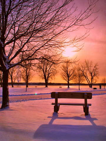 Pink bench sunset
