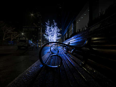 A midtown winters bench