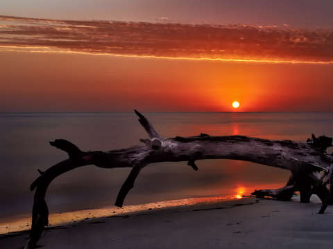 Folley island beach sunrise