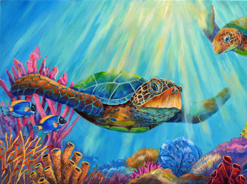 Sea turtles journey