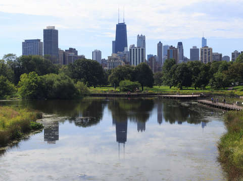 Chicago from lincoln park