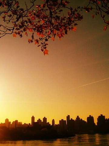 Autumn over east manhattan