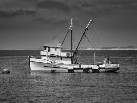 Monterey fishing boat in bw