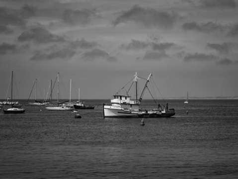 Monterey bay in bw