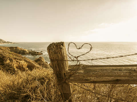 Barb wire heart by the sea 1