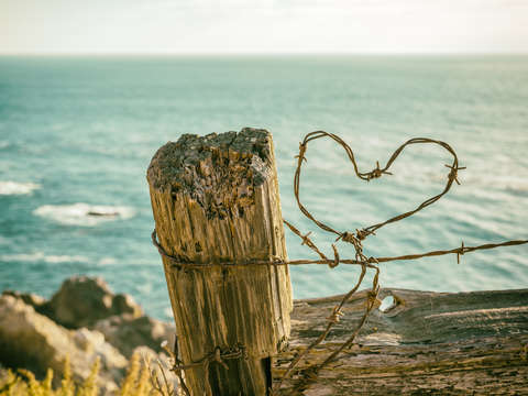 Barb wire heart by the sea 3