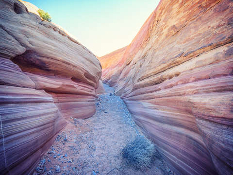 Pink canyon pastel path