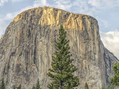Growing up under el cap