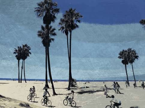 Venice beach bike tour
