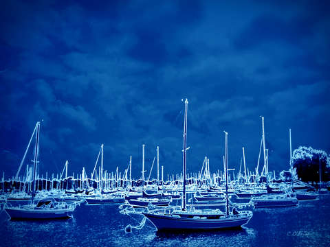 Blue harbor