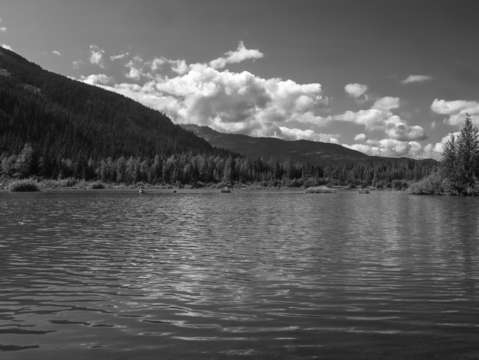 Natural tranquillity bw