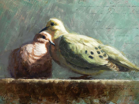 Doves in love 2