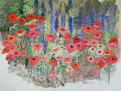 Diane's Poppies