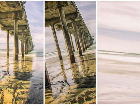 Summer at scripps triptych