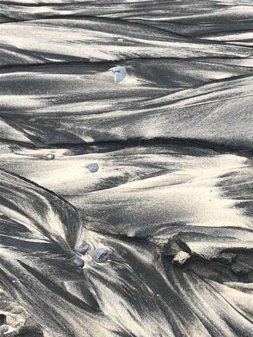 Sands of oceanside 1