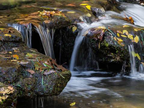 Leaves and waterfalls 2