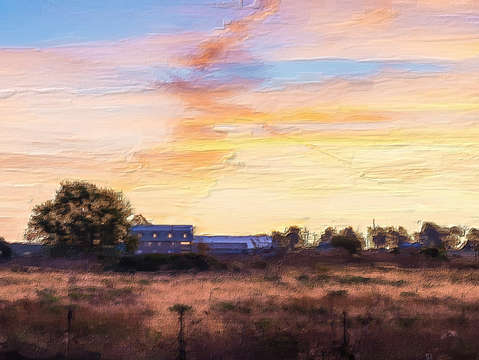 Farmers morning painterly