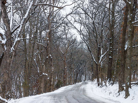 Ozark snow covered road painterly