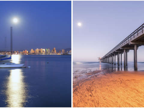The best of san diego diptych 4