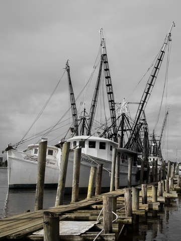 Path of a shrimper