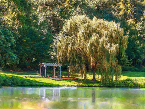 Weeping willow landscape painterly