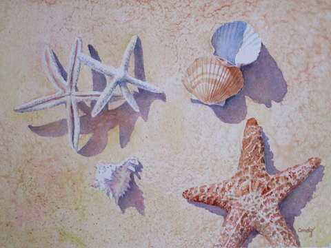 Stars and shells
