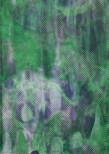 Marbled morphed purple kings row green indian