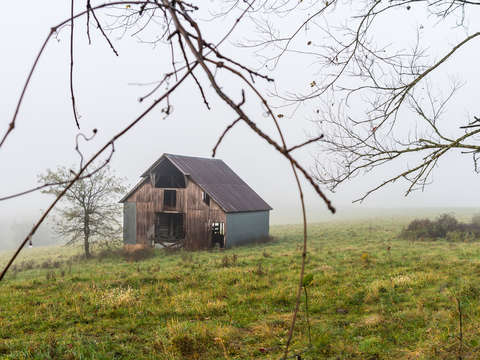 Foggy nixa barn