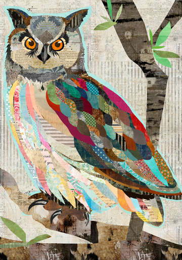 Bright eyed collage owl