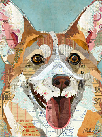 Collage welsh corgi