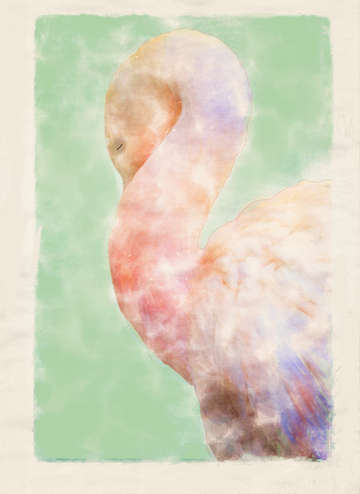 Napping pelican digital watercolor