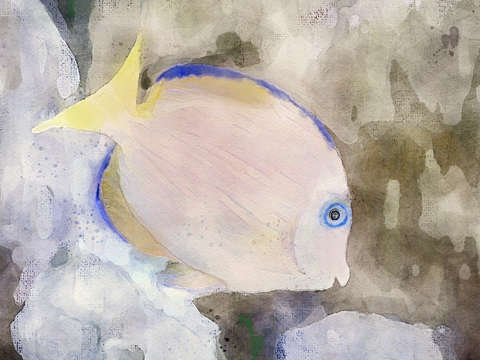 Blue fish digital watercolor