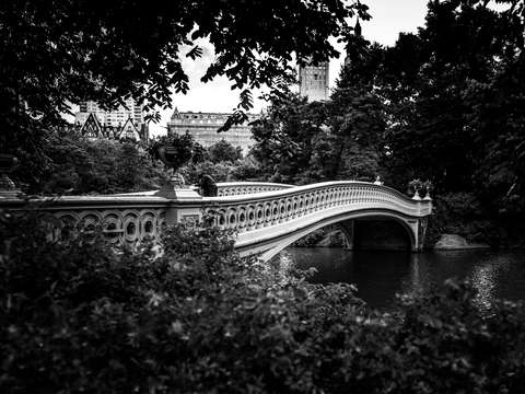 Elegant Bow Bridge