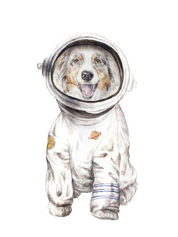 Laika the aussie space pup