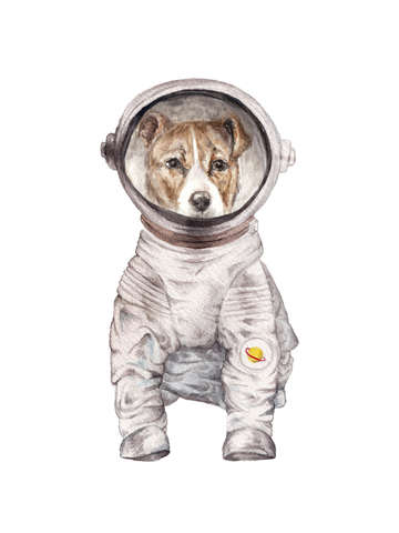 Laika the terrier space pup