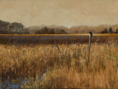 On golden marsh