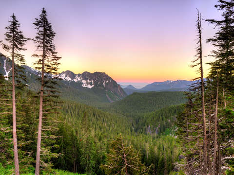 Panoramic view of Mount Rainier National Park