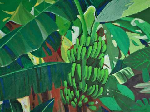 Banana tree ii