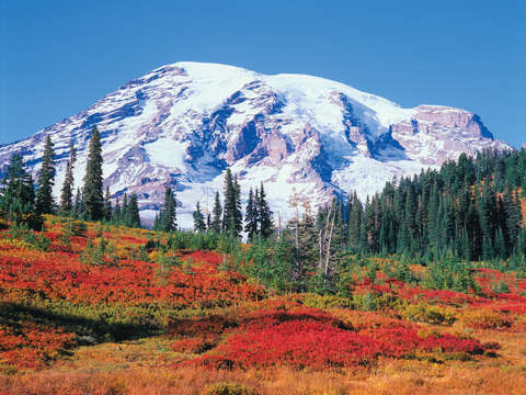Mt. Rainier Autumn Portrait #1