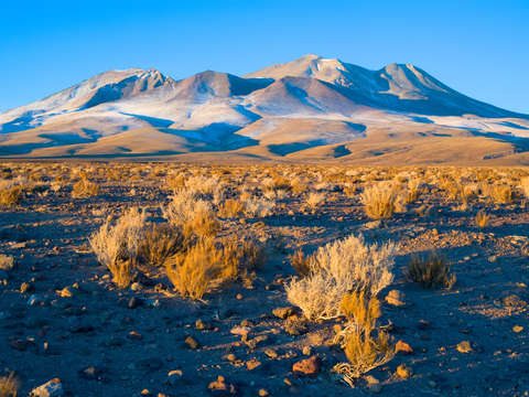 Hills in the altiplano