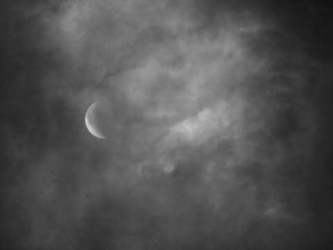 Early Morning Moon Black and White