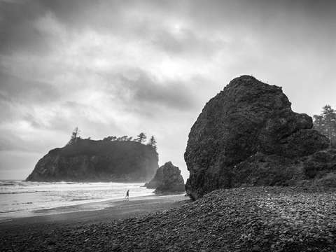 Ashy Solitude (Ruby Beach, WA)