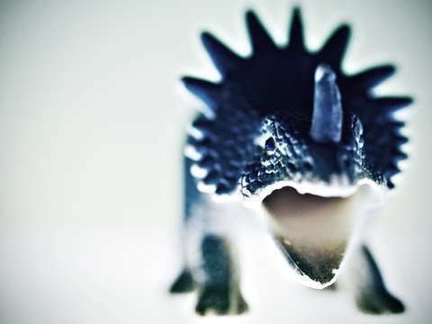Toy dinosaur blue