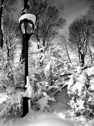 Lamp post and snow